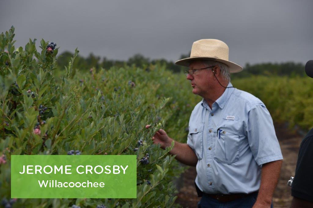 Jerome Crosby, Willacoochee