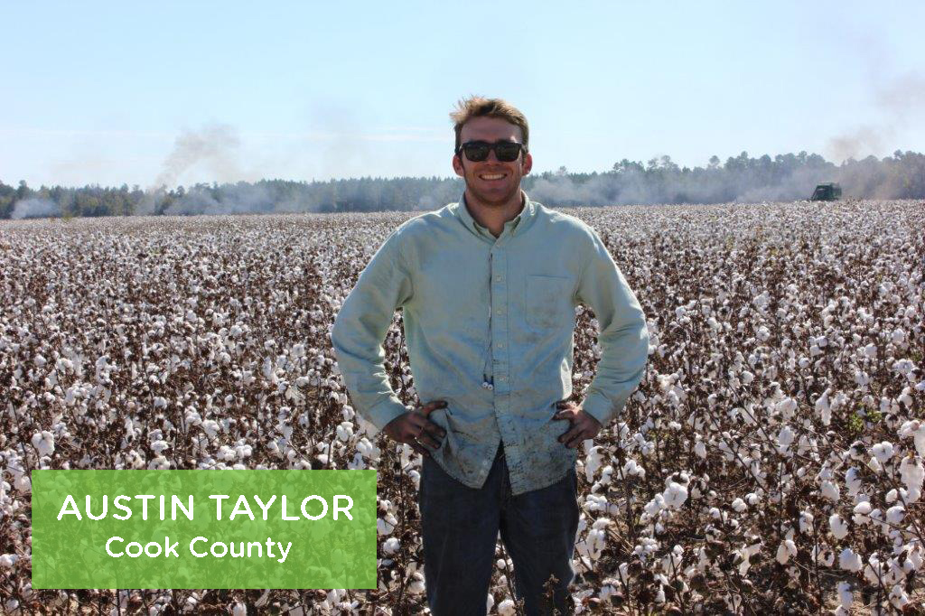 Austin Taylor, Cook County