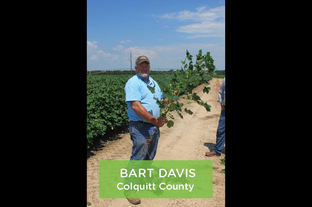 Bart Davis, Colquitt County