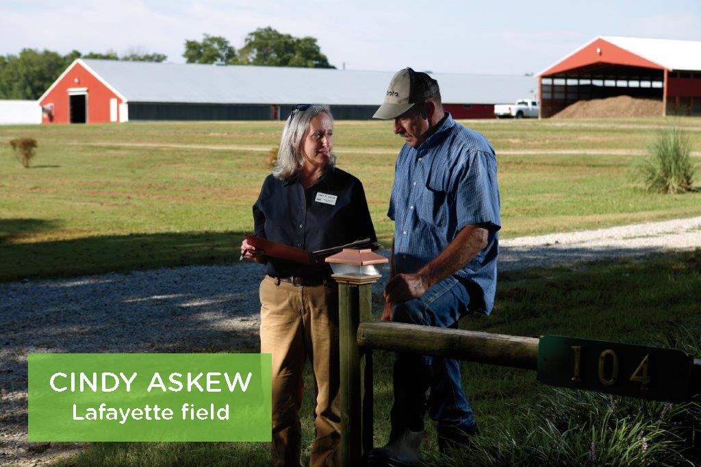 Cindy Askew, Lafayette field