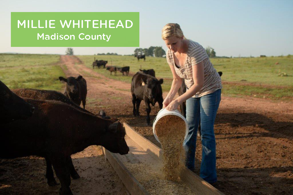 Mille Whitehead, Madison County